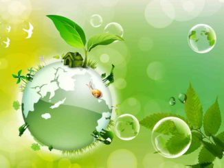 environment and ecology entranciology