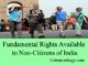 fundamental rights of non-citizens of india entranciology