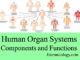 human organ systems components and functions entranciology