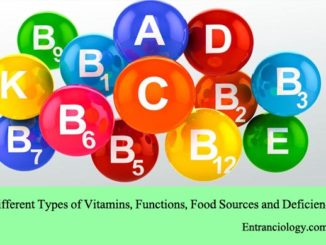 Different Types of Vitamins, Functions, Food Sources and Deficiency entranciology