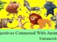 adjectives connected with animals names for competitive exams entranciology